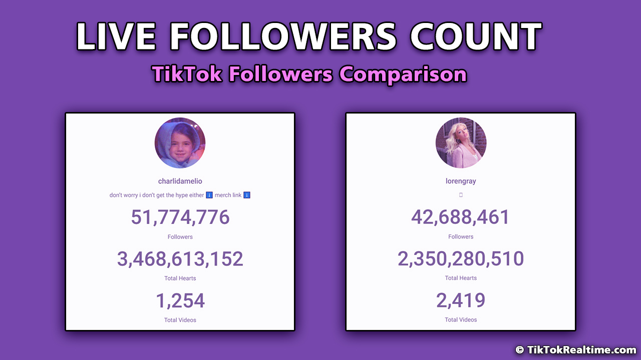 tiktok follower count
