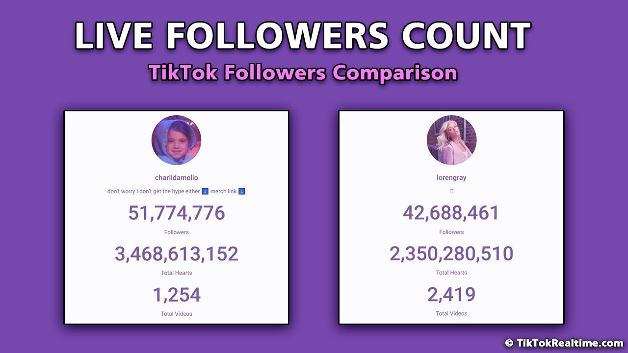 tiktok follower count